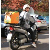Pow : Pet On Wheels, emmenez votre chien en moto e...