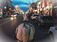 Beautiful evening in Red Bank doing wagon rides. Holiday feeling in the air