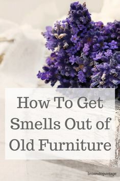 6 tried and true ways to get smells out of old furniture. If you've found the perfect piece but it smells old, damp, musty, or smoky, try these methods to get it smelling fresh and clean again. Cottage Furniture, Refurbished Furniture, Ikea Furniture, Furniture Makeover, Garden Furniture, White Furniture, Painted Furniture, Furniture Design, Furniture Cleaning