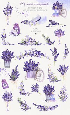 Lilac Provence watercolor collection by Tanafortuna Art on Watercolor Flowers, Watercolor Paintings, Floral Watercolor Background, Hand Logo, Journal Stickers, Aesthetic Stickers, Watercolor Illustration, Flower Art, Art Drawings