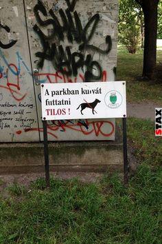 23 igazi magyar kiírás, amitől te is röhögőgörcsöt kapsz Picts, Funny Pictures, Funny Pics, Haha, Jokes, Funny Things, Fails, Random, Fanny Pics