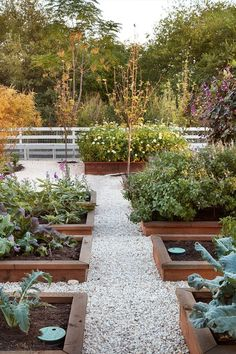 Chip & Joanna Gaines' Best Decors and Designs Joanna's Garde.-Chip & Joanna Gaines' Best Decors and Designs Joanna's Garden Flower beds Chip & Joanna Gaines' Best Decors and Designs Joanna's Garden Flower beds - Potager Garden, Herb Garden, Pea Gravel Garden, Garden Boxes, Gravel Pathway, Flower Garden Plans, Flower Gardening, Garden Path, Garden Tips