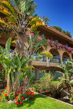 I giardini lussureggianti di Acacia Resort Parco dei Leoni