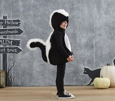 Toddler Skunk Costume | Pottery Barn Kids Diy Baby Costumes, Toddler Boy Halloween Costumes, Family Halloween Costumes, Halloween 2016, Kid Costumes, Halloween Ideas, Costume Ideas