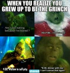 15f4099820505 21 Best Grinchmas at Universal Studios Hollywood images