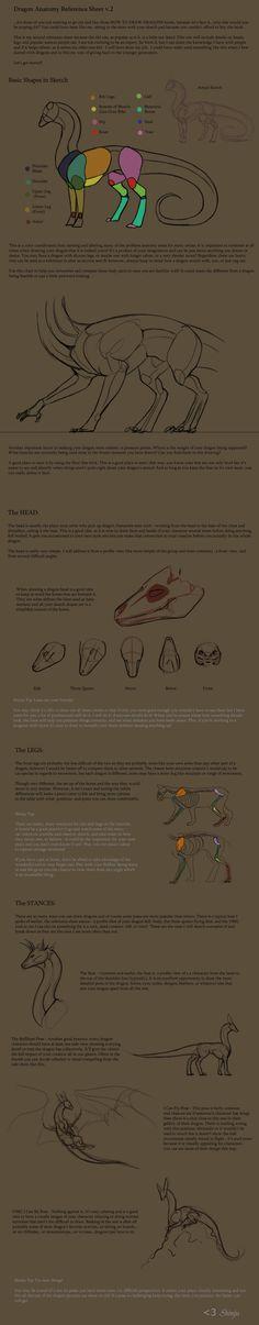 Dragon Anatomy RefSheet v. 02 by *KyriaDori on deviantART