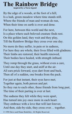 The Rainbow Bridge ~ Inspired by a Norse Legend. Made me cry to think of my fur babies that have already crossed the rainbow bridge. Rainbow Bridge Dog, Rainbow Bridge Quotes, Pet Poems, Der Boxer, Pet Loss Grief, Losing A Pet, Losing A Dog Quotes, Dog Loss Quotes, Pet Quotes