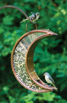 Make it easy for birds to eat everything under the sun and moon with the Crescent Moon Bird Feeder by Good Directions. The unique crescent shape invites birds to perch and eat in comfort, so that bird . Dream Garden, Garden Art, Music Garden, Garden Birds, Garden Stakes, Garden Trellis, Diy Bird Feeder, Squirrel Proof Bird Feeders, Hanging Bird Feeders