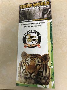Tiger World North Carolina