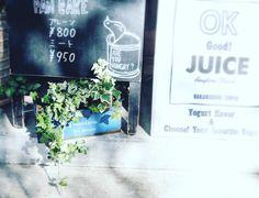 #ボタニカル#アプリ#greensnap  #観葉植物 #ガーデニング #グリーンインテリア #園芸 #花部 #フラワー #花のある暮らし  #gardening #containergarden #flowerstagram #florist #greenthumb #greenlife #plants#containergarden#botanical#igersjp