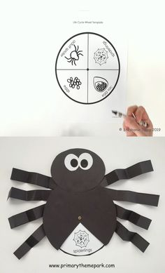 Spider Life Cycle Craft Spin the wheel to show each stage in life cycle of a spider with this cute craft! Four differentiated wheel templates makes this easy to customize for all of your students. Perfect Halloween activity or use during a spider unit! Halloween Activities, Preschool Crafts, Preschool Activities, Halloween Crafts, Charlottes Web Activities, Life Cycle Craft, Art For Kids, Crafts For Kids, Spider Crafts