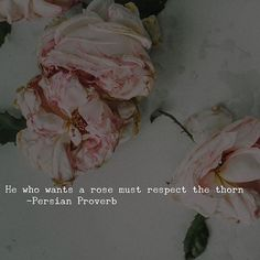 He who wants a rose must respect the thorn -Persian Proverb…
