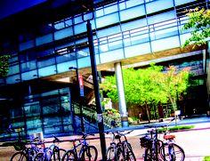 Sixth College San Diego, Basketball Court, College, Architecture, Arquitetura, University, Architecture Design, Colleges