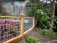 Sublime Modern fence wood type,Wood fence spacing and Garden fence with gate. Hog Panel Fencing, Cattle Panel Fence, Hog Wire Fence, Cattle Panels, Deer Fence, Front Yard Fence, Fence Panels, Cattle Panel Trellis, Mesh Fencing
