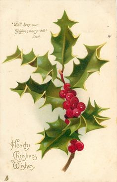 """Hearty Christmas Wishes ~ holly.  """"We'll keep our Christmas merry still."""" ~ Scott"""