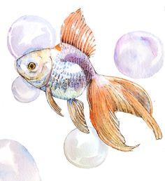Gold fish - watercolor paiting