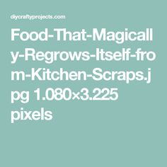 Food-That-Magically-Regrows-Itself-from-Kitchen-Scraps.jpg 1.080×3.225 pixels