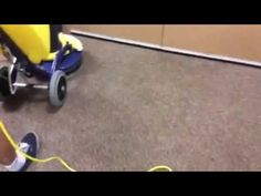 Top quality green carpet cleaning and stain removal services by 5 Star Cleaning technicians in an office in Richmond Hill Commercial Carpet Cleaning, Removal Services, Cleaning Services, Rug Cleaning, How To Clean Carpet, Toronto, Plant, Star, Videos