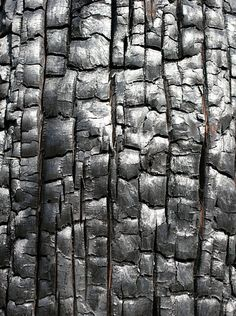 ●charred wood- gives the effect of damaged. I also really like the way it has created bumps with long lined sections. Could be recreated using leather materials, used as skin.