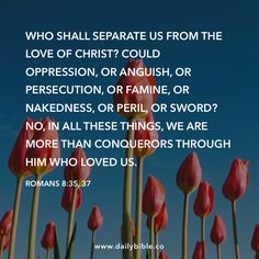 Romans 8:35, 37 Who shall separate us from the love of Christ? Could oppression, or anguish, or persecution, or famine, or nakedness, or peril, or sword?  No, in all these things, we are more than conquerors through him who loved us.