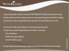 Apa itu Minyak Esensial Young Living? #katalogEO Young Living Company of Angels Indonesia