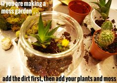 How to Make a Terrarium - easy to follow directions with great pics to help!  Could be an easy science activity.