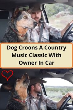 #Dog #Croons #Country #Music #Classic #Owner #Car Angelina Jolie Style, Weekly Outfits, Amazing Buildings, American Horror Story, Girly Outfits, Black Panther, Country Music, Anime Guys, Eye Makeup