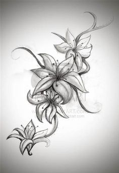 Hibiscus Tattoos Sketches for Women - Bing Images