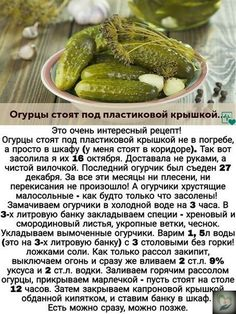 Gluten Free Recipes, Vegan Recipes, Cooking Recipes, Russian Recipes, Keto Diet Plan, Bon Appetit, Hot Dog Buns, Food Styling, Pickles