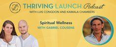 Spiritual Wellness – Gabriel Cousens
