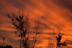 Grudniowy zachód słońca | Pejzażownia