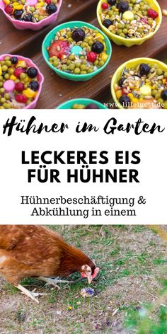 Keeping chickens in the garden - making summer snacks for the chickens yourself - making ice cream for chickens, Chicken Garden, Growing Veggies, Keeping Chickens, Healthy Sandwiches, Make Ice Cream, Chicken Runs, Fresco, Yum Yum Chicken, Whole 30 Recipes