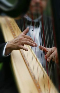Hands of a harpist. Steve Mccurry, Mundo Musical, Some Enchanted Evening, Black Tie Affair, Harbin, Sound Of Music, Cello, Classical Music, Amazing Photography