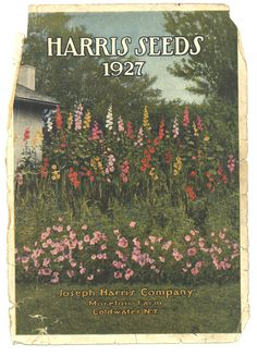 Vintage Harris Seeds Catalog Cover art from 1927. (Rochester, NY)
