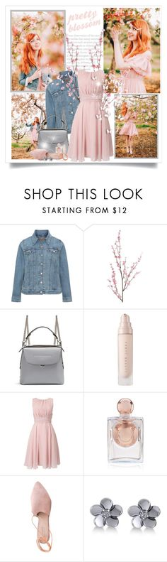 """Untitled #646"" by beautifulplace ❤ liked on Polyvore featuring Levi's, Pier 1 Imports, Fendi, Phase Eight, La Perla, Summit and Allurez"