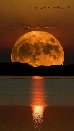 Beautiful landscapes – Photography World Beautiful Nature Wallpaper, Beautiful Sunset, Beautiful Landscapes, Dead Beautiful, Beautiful Scenery, Moon Photography, Landscape Photography, Photography Ideas, Photography Flowers