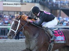 I'm a Chatterbox wins the G1 Cotillion Stakes.