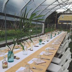 The rising popularity of events at Food Service, Bohemian Decor, Roots, Urban, Table Decorations, Foodies, Plants, Community, Key