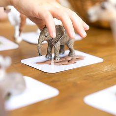 Spielidee: Was Tiere essen (Montessori DIY www.chezmamapoule.com Bildrechte Ellen Girod)