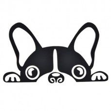 The Boston Terrier breed originated in Boston and is one of the few breeds that are native to the U. In the an inter-mixing of English Bulldogs Boston Terriers, Boston Terrier Love, Yorkshire Terrier Puppies, Terrier Dogs, Yorkie Puppies, Car Decals, Vinyl Decals, Wall Decal, Dog Car