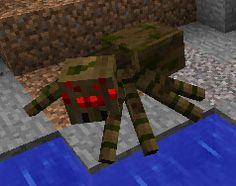 tough spider