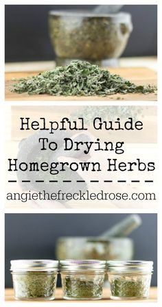 Helpful Guide To Drying Homegrown Herbs   angiethefreckledrose.com