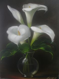 Oil Painting on Canvas – Eduardo Mecenero: Milk Cups – Classic – Modern Lily Painting, Fruit Painting, Oil Painting On Canvas, Canvas Art, Arte Floral, Calla Lily, Calla Lillies, Munier, Flower Sketches