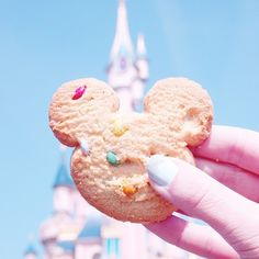 Disneyland® Paris ❤️