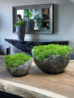 wavy bowl supplied by koberg If there are some patterns, or if the plants are placed on the…want those urns! Ikebana, Decoration Restaurant, Decoration Plante, Home Decoration, Minimalist Garden, Moss Art, Concrete Crafts, Interior Plants, Plant Decor
