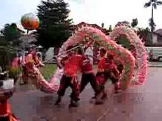 This is a vidoe showing the chinese lion dance. This dance is shown on chinese new year. Lots of people hold long poles which all connect to a paper dragon. They dance around with the dragon. Chinese Culture, Chinese Art, Martin Luther King, February Holidays, January, Chinese New Year Dragon, Art Chinois, Bible School Crafts, Dragon Dance