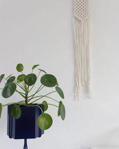 ferm LIVING Plant Stand & Hexagon pot in dark blue: https://www.fermliving.com/webshop/shop/green-living.aspx