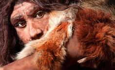 Science News Articles: 7 surprising facts about Neanderthals