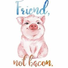 Defend Animals · PETA-Approved Vegan T-Shirts & Cruelty-Free Clothing for animal rights activists ? Vegetarian Tattoo, Vegetarian Quotes, Vegan Quotes, Vegetarian Recipes, Vegan Memes, Vegan Humor, Mercy For Animals, Why Vegan, Stop Animal Cruelty