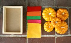 Invitation to Play with Mini Pumpkins & Felt Squares~ Buggy and Buddy